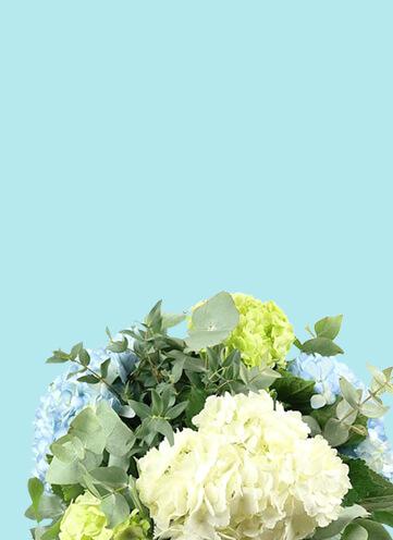 Same day Flowers Putney